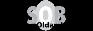 Stichting Oldambt Blues